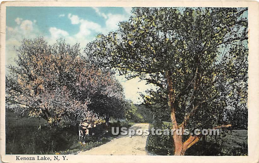Road Scene - Kenoza Lake, New York NY Postcard