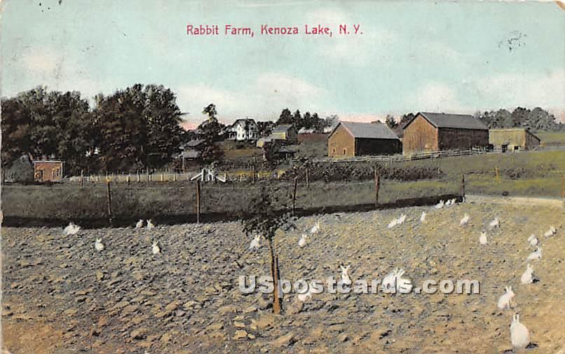 Rabbit Farm - Kenoza Lake, New York NY Postcard
