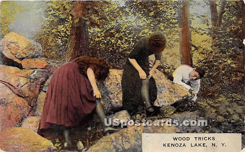 Wood Tricks - Kenoza Lake, New York NY Postcard