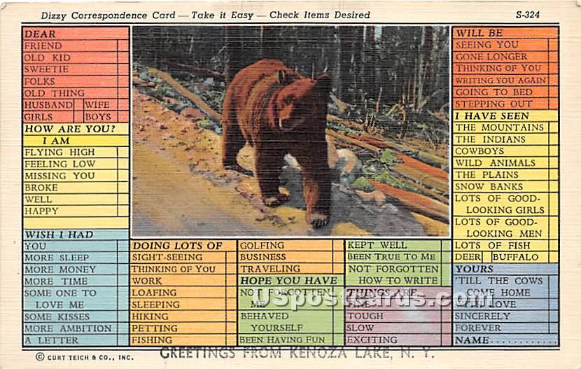 Dizzy Correspondence Card - Kenoza Lake, New York NY Postcard