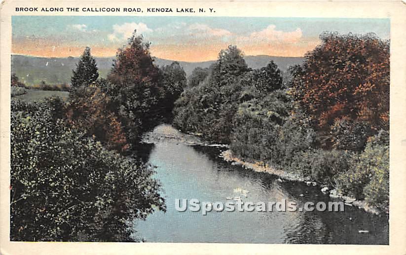 Brook along the Callicoon Road - Kenoza Lake, New York NY Postcard