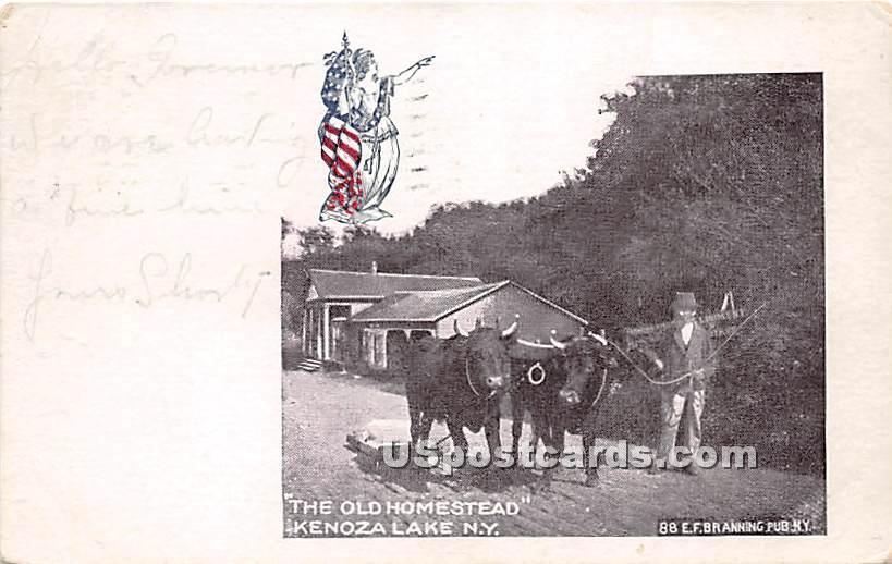 The Old Homestead - Kenoza Lake, New York NY Postcard
