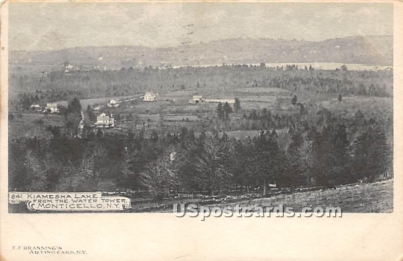 View from Water Tower - Kiamesha Lake, New York NY Postcard