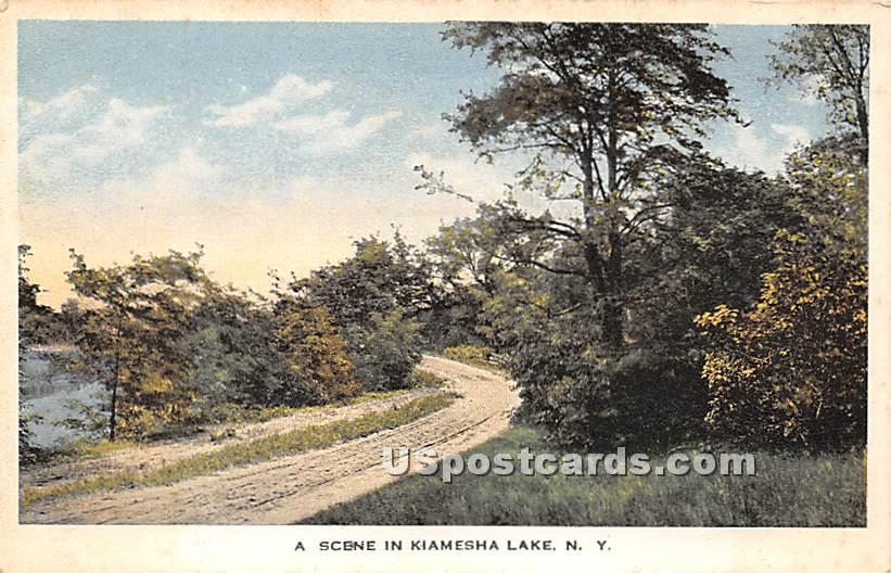 Road Scene - Kiamesha Lake, New York NY Postcard