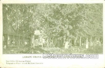 Larkin Grove - Lakeport, New York NY Postcard