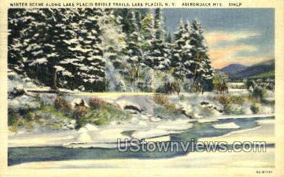 Bridle Trails - Lake Placid, New York NY Postcard