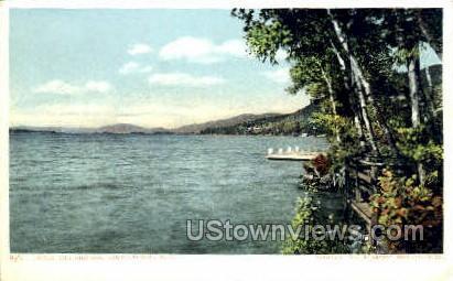 Birches - Lake George, New York NY Postcard