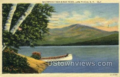 Birch Point - Lake Placid, New York NY Postcard