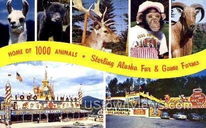 Home of 1000 Animals - Lake Placid, New York NY Postcard