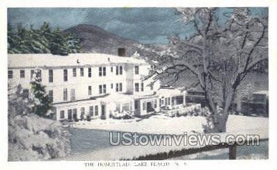 The Homestead - Lake Placid, New York NY Postcard