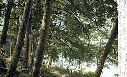 Adirondack Mtns. - Lake Placid, New York NY Postcard