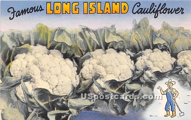 Famous Cauliflower - Long Island, New York NY Postcard