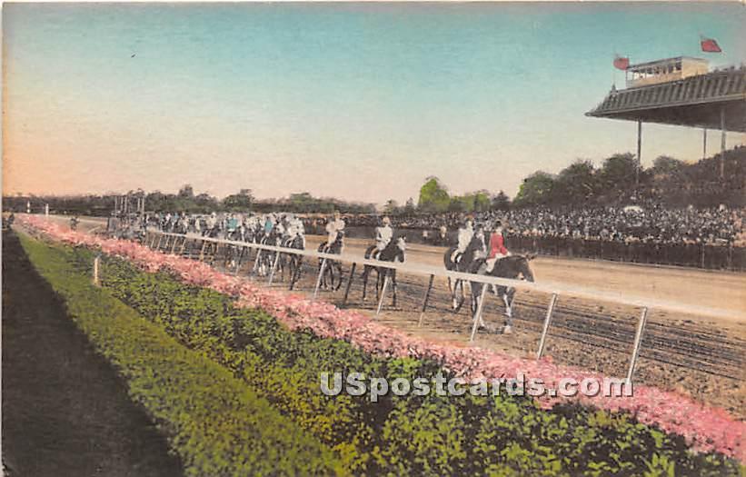 Belmont Park - Long Island, New York NY Postcard