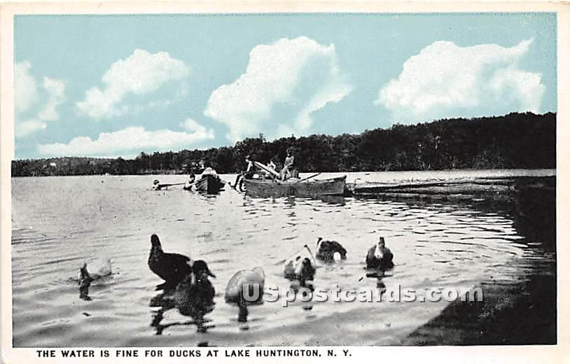 Water is Fine for Ducks - Lake Huntington, New York NY Postcard