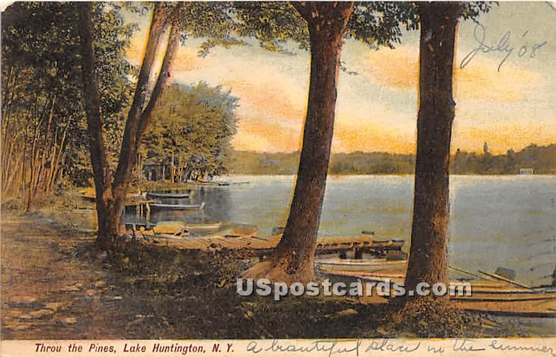 Throu the Pines - Lake Huntington, New York NY Postcard
