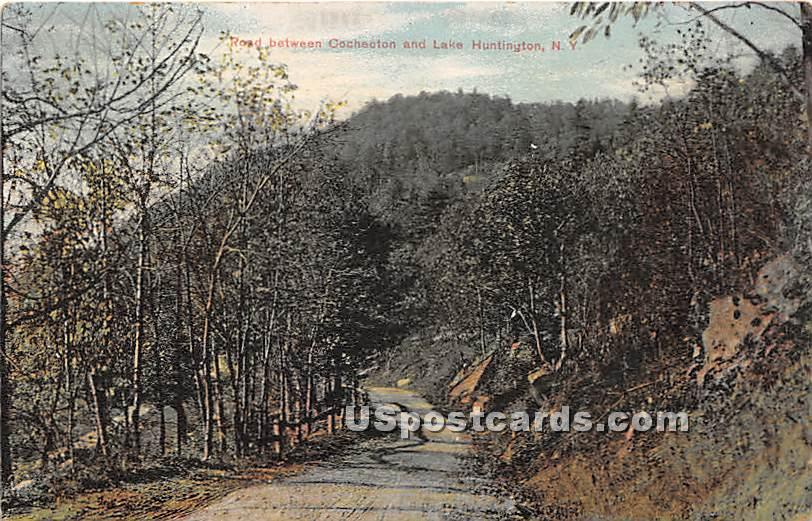 Road between Cochecton - Lake Huntington, New York NY Postcard