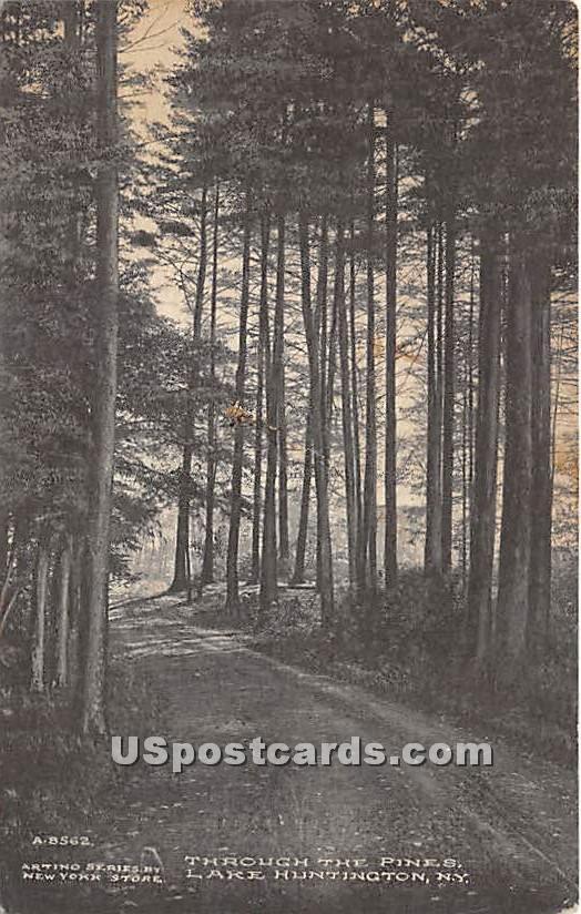 Through the Pines - Lake Huntington, New York NY Postcard