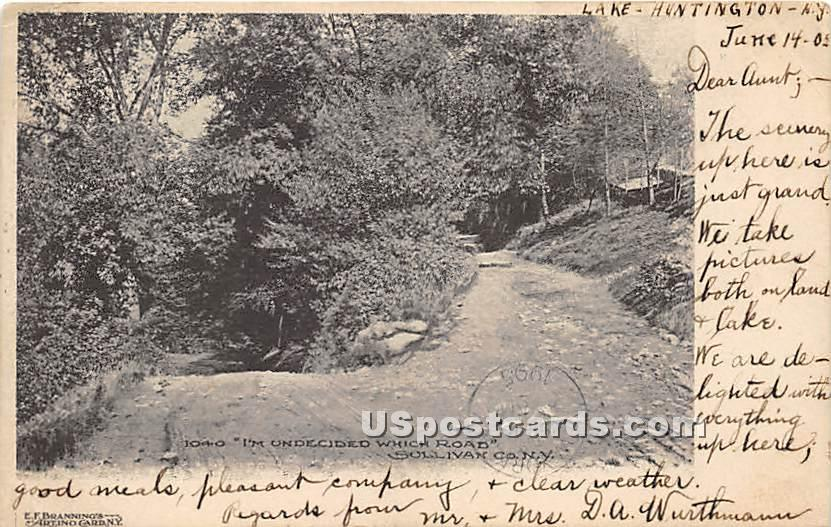 Im Undecided Which Road - Lake Huntington, New York NY Postcard