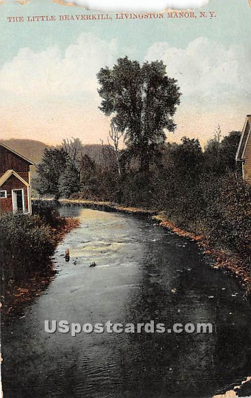 The Little Beaverkill - Livingston Manor, New York NY Postcard