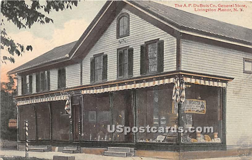 A P DuBois Co General Store - Livingston Manor, New York NY Postcard