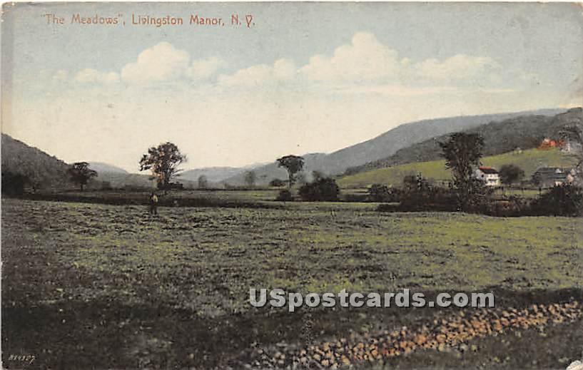 The Meadows - Livingston Manor, New York NY Postcard