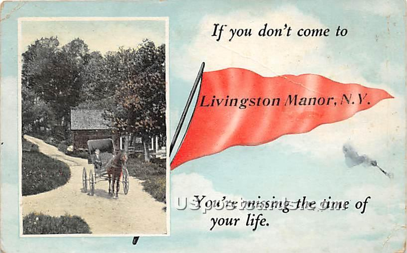 If you don't come - Livingston Manor, New York NY Postcard