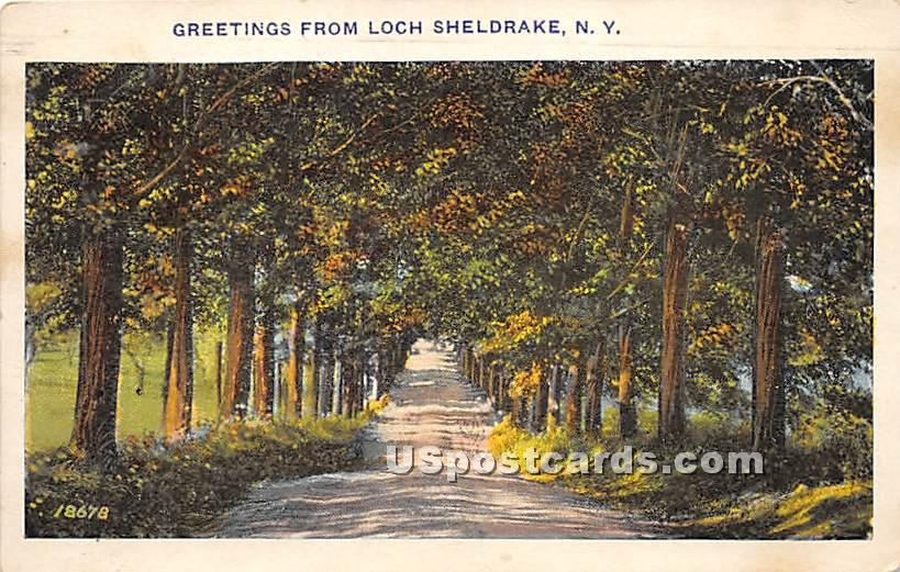 Road Scene - Loch Sheldrake, New York NY Postcard
