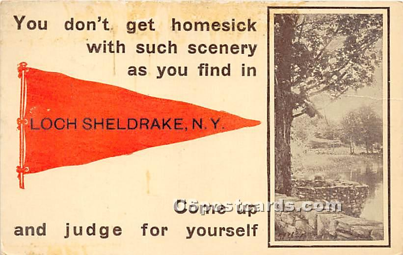 You donÌt get homesick with such scenery - Loch Sheldrake, New York NY Postcard