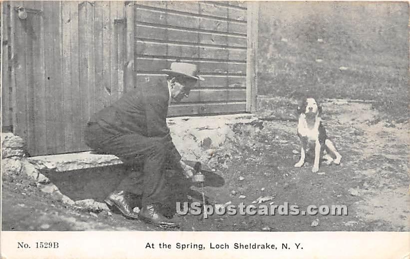 At the Spring - Loch Sheldrake, New York NY Postcard
