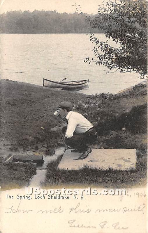 The Spring - Loch Sheldrake, New York NY Postcard
