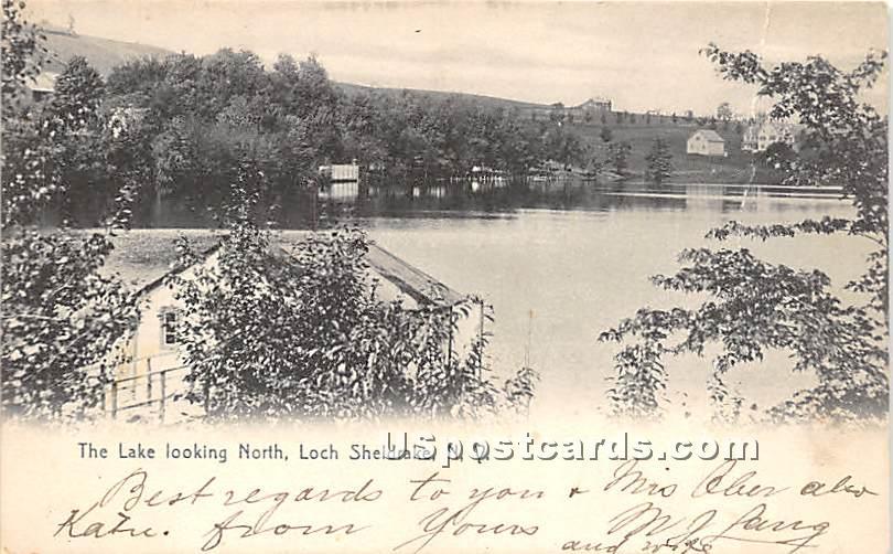 Lake Looking North - Loch Sheldrake, New York NY Postcard