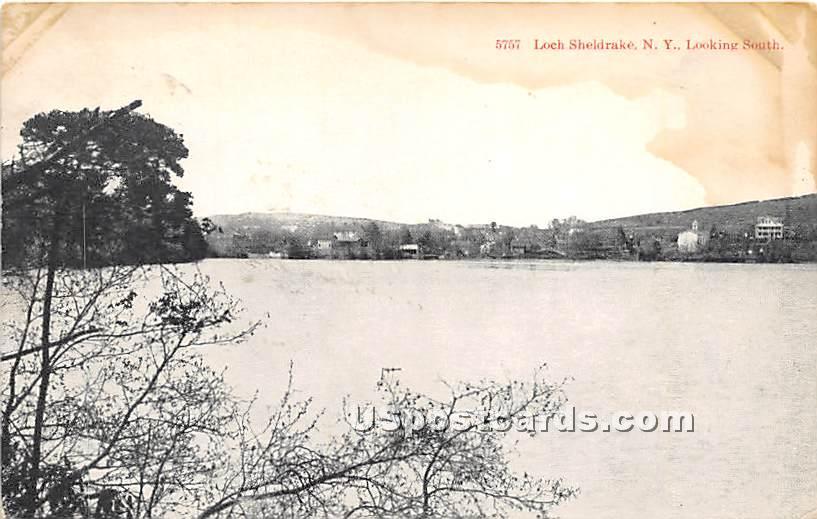 Looking South - Loch Sheldrake, New York NY Postcard