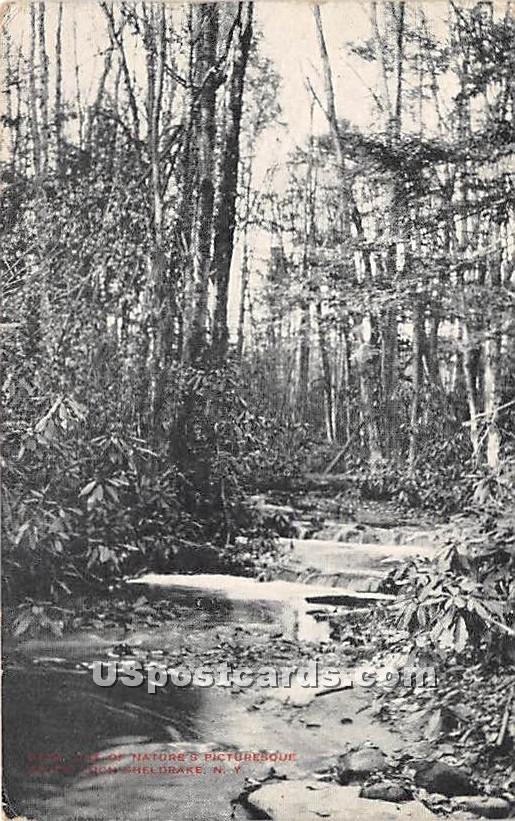 Brook Scene - Loch Sheldrake, New York NY Postcard