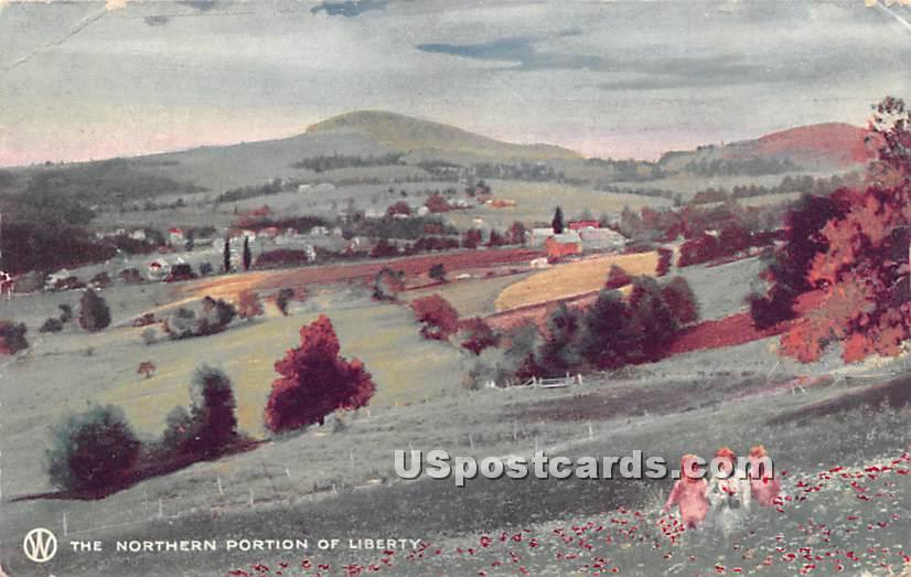 Northern Portion - Liberty, New York NY Postcard