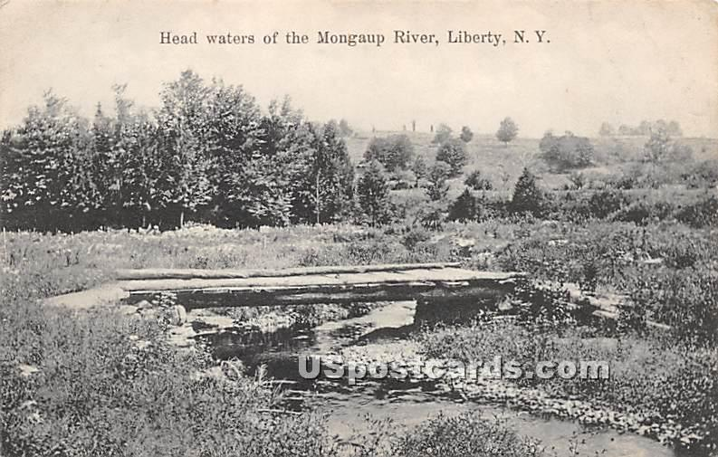 Head Waters of the Mongaup River - Liberty, New York NY Postcard