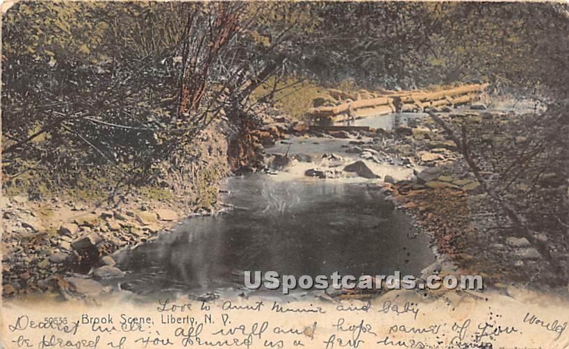 Brook Scene - Liberty, New York NY Postcard