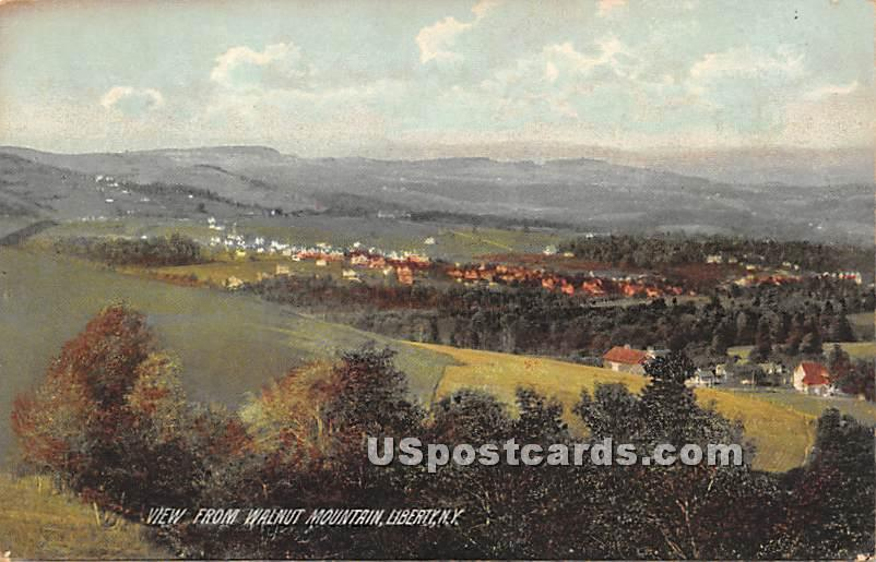 View from Walnut Mountain - Liberty, New York NY Postcard