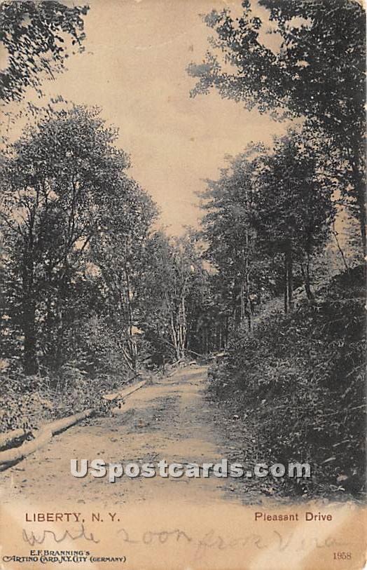Pleasant Drive - Liberty, New York NY Postcard