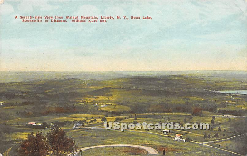 Walnut Mountain - Liberty, New York NY Postcard