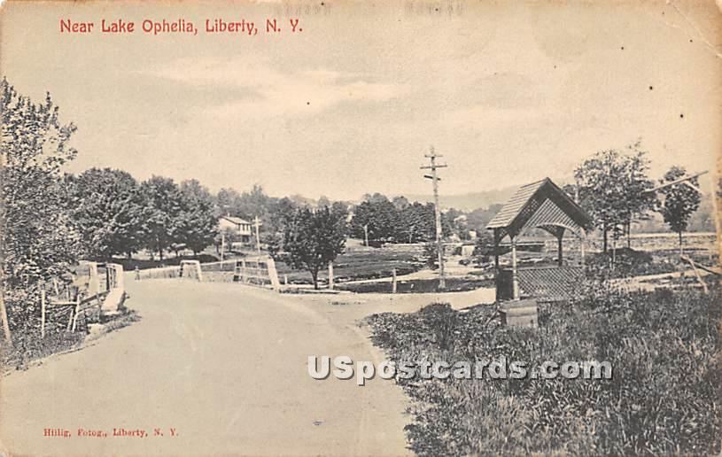 Near Lake Ophelia - Liberty, New York NY Postcard