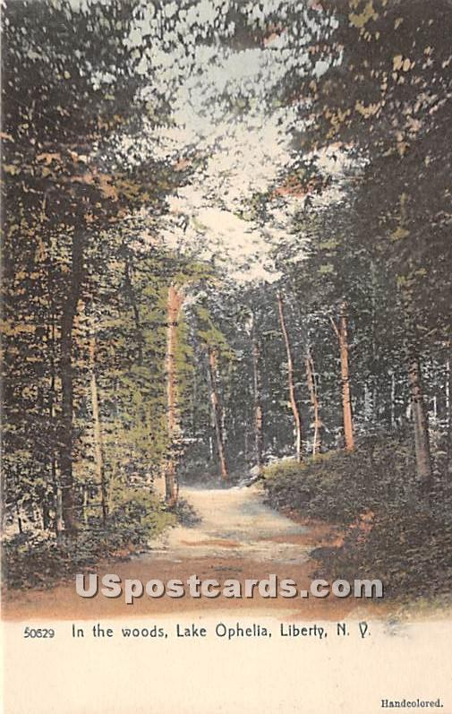 In the Woods - Liberty, New York NY Postcard
