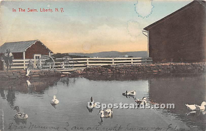 In the Swim - Liberty, New York NY Postcard