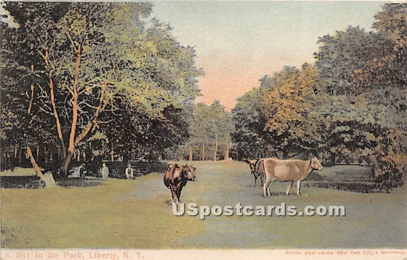 In the Park - Liberty, New York NY Postcard