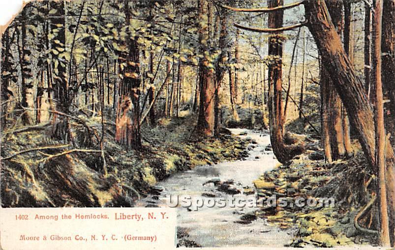 Among the Hemlocks - Liberty, New York NY Postcard