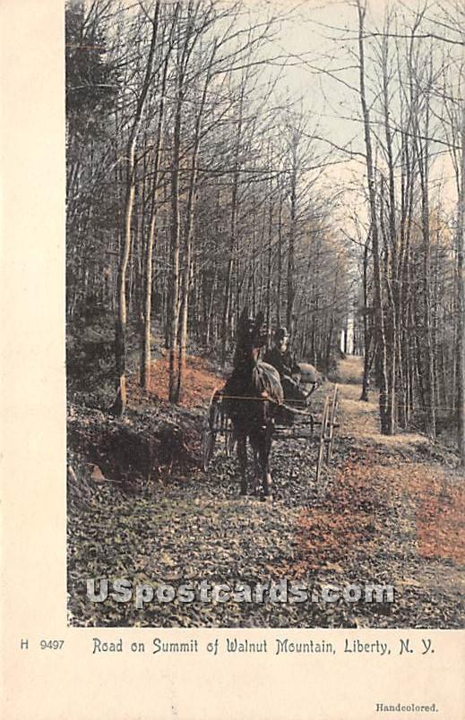 Road of Summit of Walnut Mountain - Liberty, New York NY Postcard