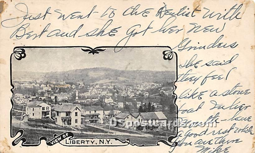 Birds Eye View - Liberty, New York NY Postcard