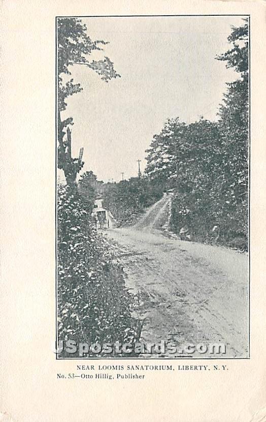Near Loomis Sanatorium - Liberty, New York NY Postcard