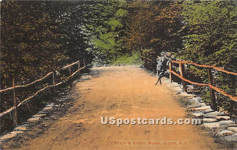 Bridge in Babbitt Woods - Liberty, New York NY Postcard