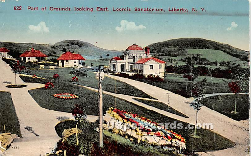 Part of Grounds Looking East - Liberty, New York NY Postcard