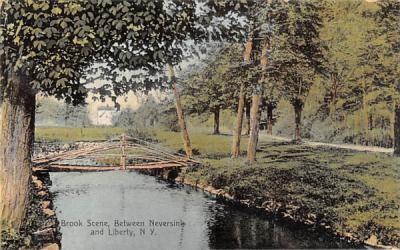 Brook Scene Liberty, New York Postcard